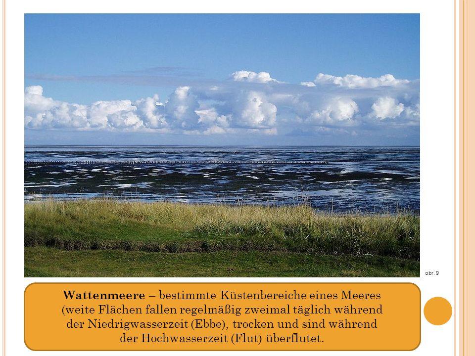 Wattenmeere – bestimmte Küstenbereiche eines Meeres (weite Flächen fallen regelmäßig zweimal täglich während der Niedrigwasserzeit (Ebbe), trocken und sind während der Hochwasserzeit (Flut) überflutet.