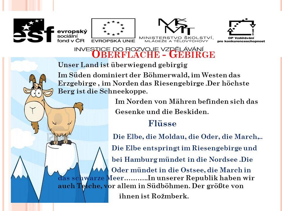 O BERFLÄCHE - G EBIRGE Unser Land ist überwiegend gebirgig Im Süden dominiert der Böhmerwald, im Westen das Erzgebirge, im Norden das Riesengebirge.Der höchste Berg ist die Schneekoppe.