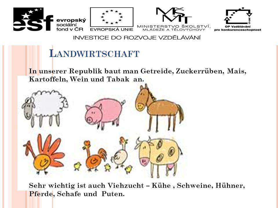 L ANDWIRTSCHAFT In unserer Republik baut man Getreide, Zuckerrüben, Mais, Kartoffeln, Wein und Tabak an. Sehr wichtig ist auch Viehzucht – Kühe, Schwe