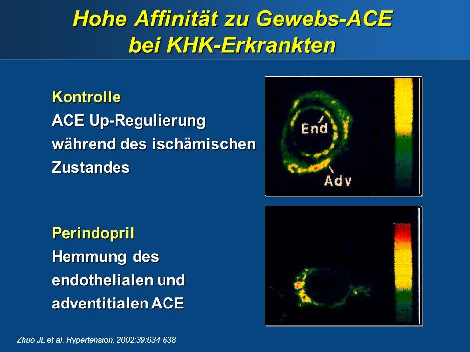 Kontrolle ACE Up-Regulierung während des ischämischen Zustandes Perindopril Hemmung des endothelialen und adventitialen ACE Hohe Affinität zu Gewebs-ACE bei KHK-Erkrankten Zhuo JL et al.