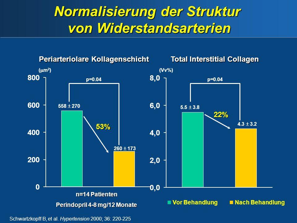 Schwartzkopff B, et al.