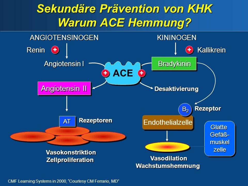GlatteGefäß-muskelzelle Sekundäre Prävention von KHK Warum ACE Hemmung.