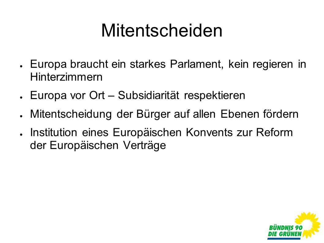 Mitentscheiden Europa braucht ein starkes Parlament, kein regieren in Hinterzimmern Europa vor Ort – Subsidiarität respektieren Mitentscheidung der Bürger auf allen Ebenen fördern Institution eines Europäischen Konvents zur Reform der Europäischen Verträge