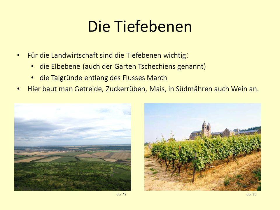 Für die Landwirtschaft sind die Tiefebenen wichtig : die Elbebene (auch der Garten Tschechiens genannt) die Talgründe entlang des Flusses March Hier b