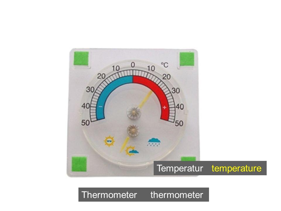 Thermometer thermometer Temperatur temperature