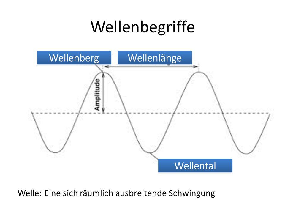 Wellenbegriffe Welle: Eine sich räumlich ausbreitende Schwingung Wellenberg Wellenlänge Wellental