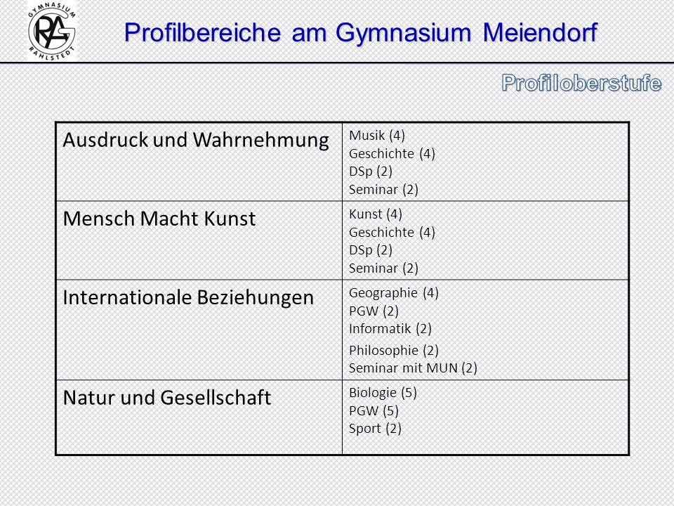 Profilbereiche am Gymnasium Meiendorf Ausdruck und Wahrnehmung Musik (4) Geschichte (4) DSp (2) Seminar (2) Mensch Macht Kunst Kunst (4) Geschichte (4