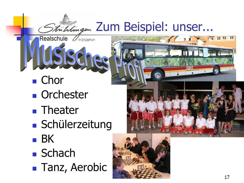 17 Zum Beispiel: unser... Chor Orchester Theater Schülerzeitung BK Schach Tanz, Aerobic