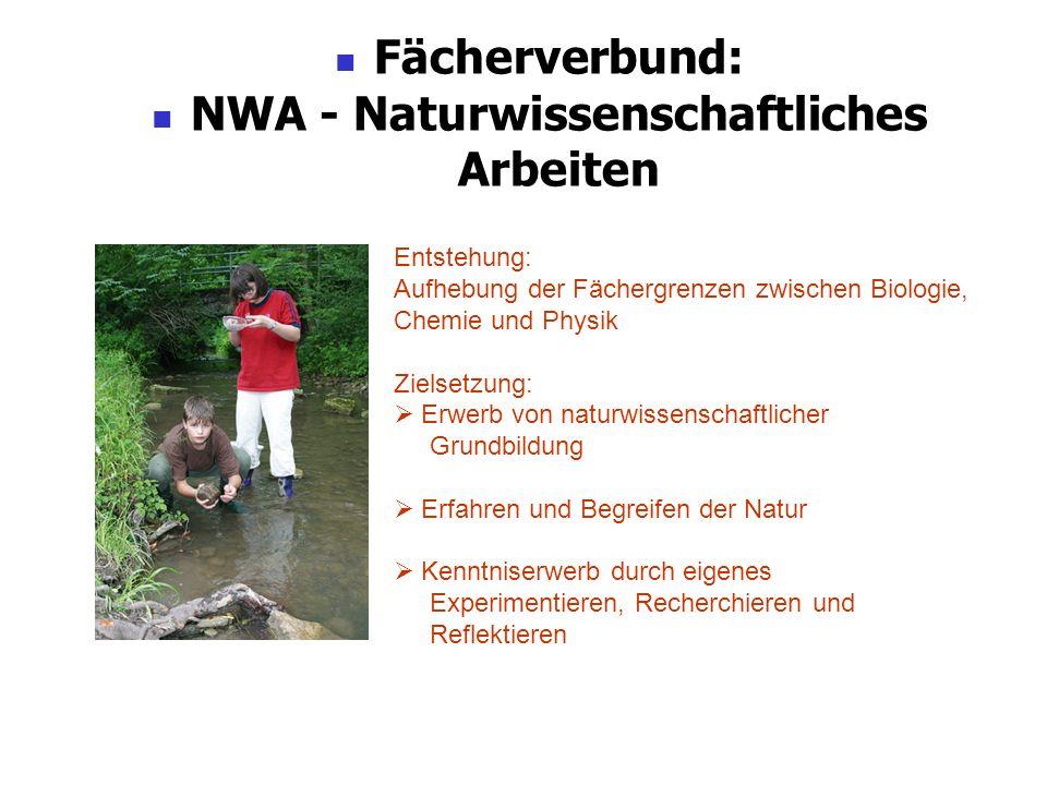 Fächerverbund: NWA - Naturwissenschaftliches Arbeiten Entstehung: Aufhebung der Fächergrenzen zwischen Biologie, Chemie und Physik Zielsetzung: Erwerb