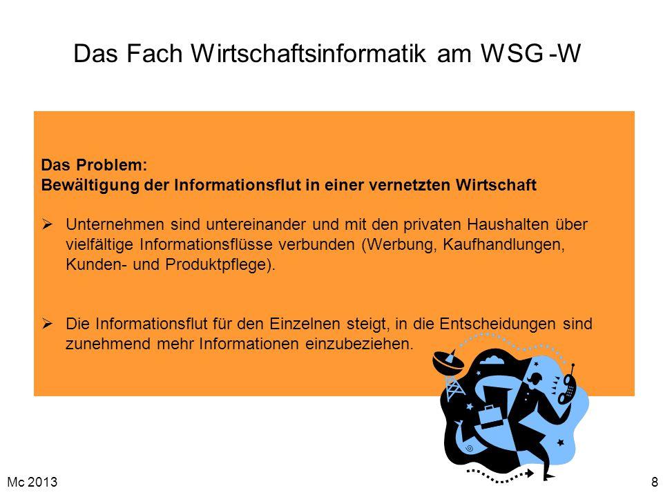 Mc 20138 Das Fach Wirtschaftsinformatik am WSG -W Das Problem: Bewältigung der Informationsflut in einer vernetzten Wirtschaft Unternehmen sind untere