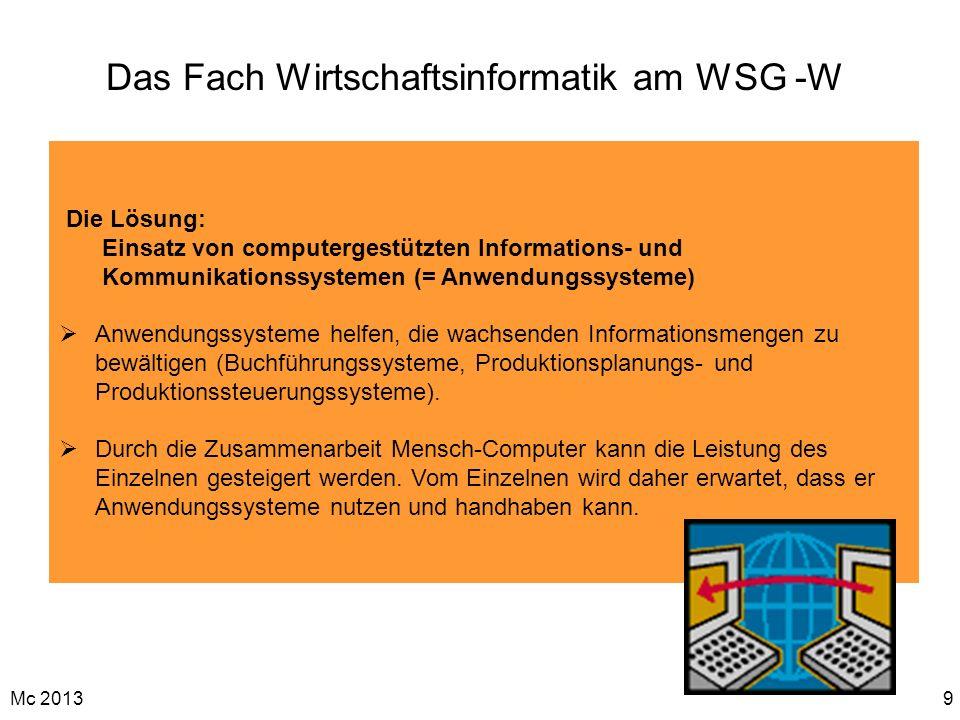 Mc 20139 Das Fach Wirtschaftsinformatik am WSG -W Die Lösung: Einsatz von computergestützten Informations- und Kommunikationssystemen (= Anwendungssys