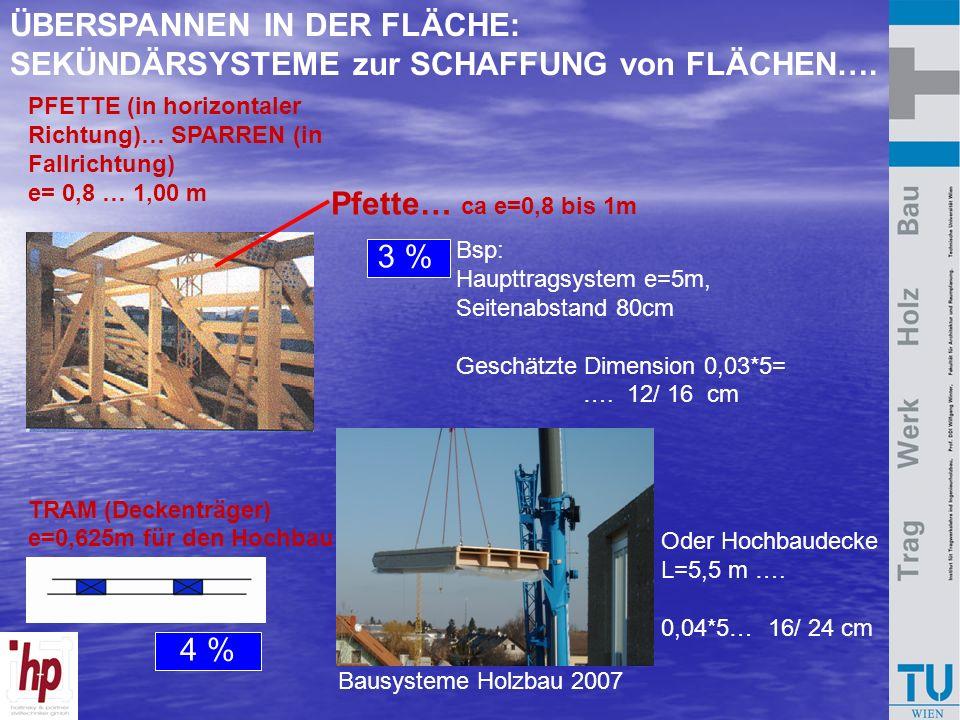 Bausysteme Holzbau 2007 PFETTE (in horizontaler Richtung)… SPARREN (in Fallrichtung) e= 0,8 … 1,00 m TRAM (Deckenträger) e=0,625m für den Hochbau Pfet