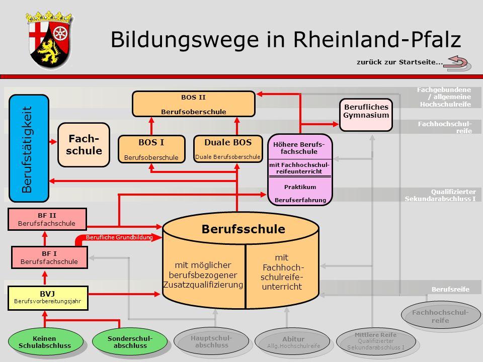 Bildungswege in Rheinland-Pfalz zurück zur Startseite...