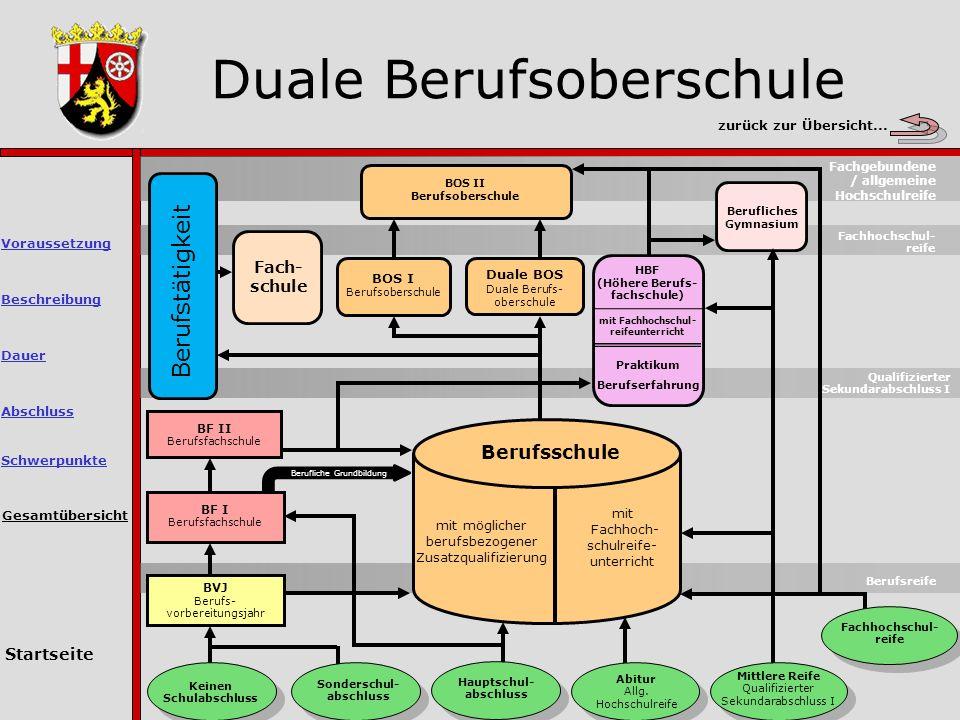 Duale Berufsoberschule Gesamtübersicht Berufsreife Keinen Schulabschluss Sonderschul- abschluss Hauptschul- abschluss Abitur Allg.