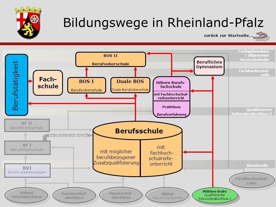 Berufliches Gymnasium Gesamtübersicht Berufsreife Keinen Schulabschluss Sonderschul- abschluss Hauptschul- abschluss Abitur Allg.
