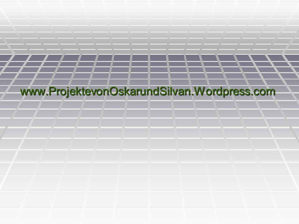 www.ProjektevonOskarundSilvan.Wordpress.com