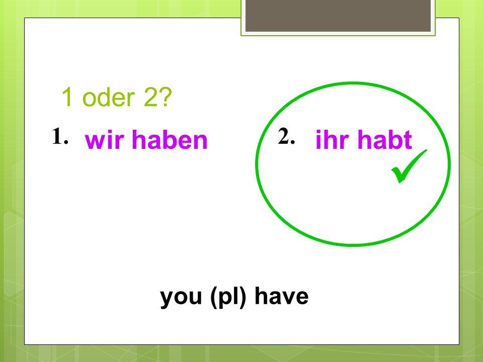 1 oder 2? 1.2. you (pl) have wir habenihr habt