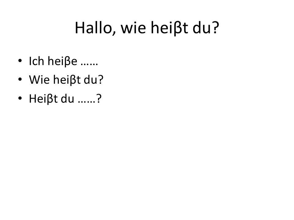 Hallo, wie heiβt du? Ich heiβe …… Wie heiβt du? Heiβt du ……?
