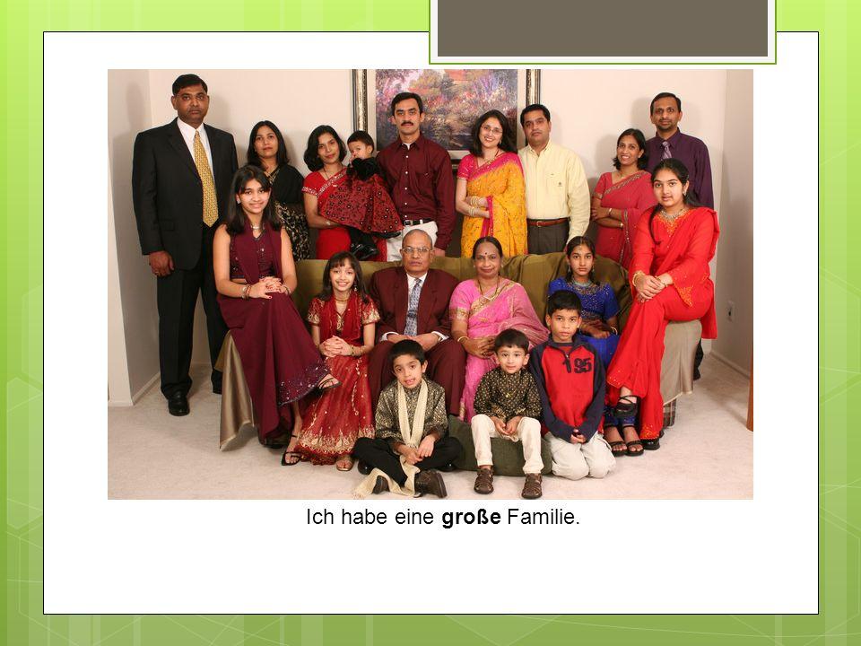 Ich habe eine große Familie.