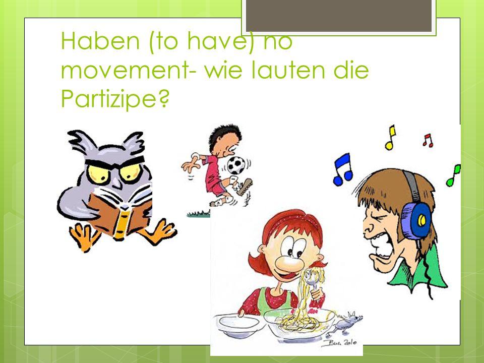 Sein – to be (movement)- wie lauten die Partizpe?