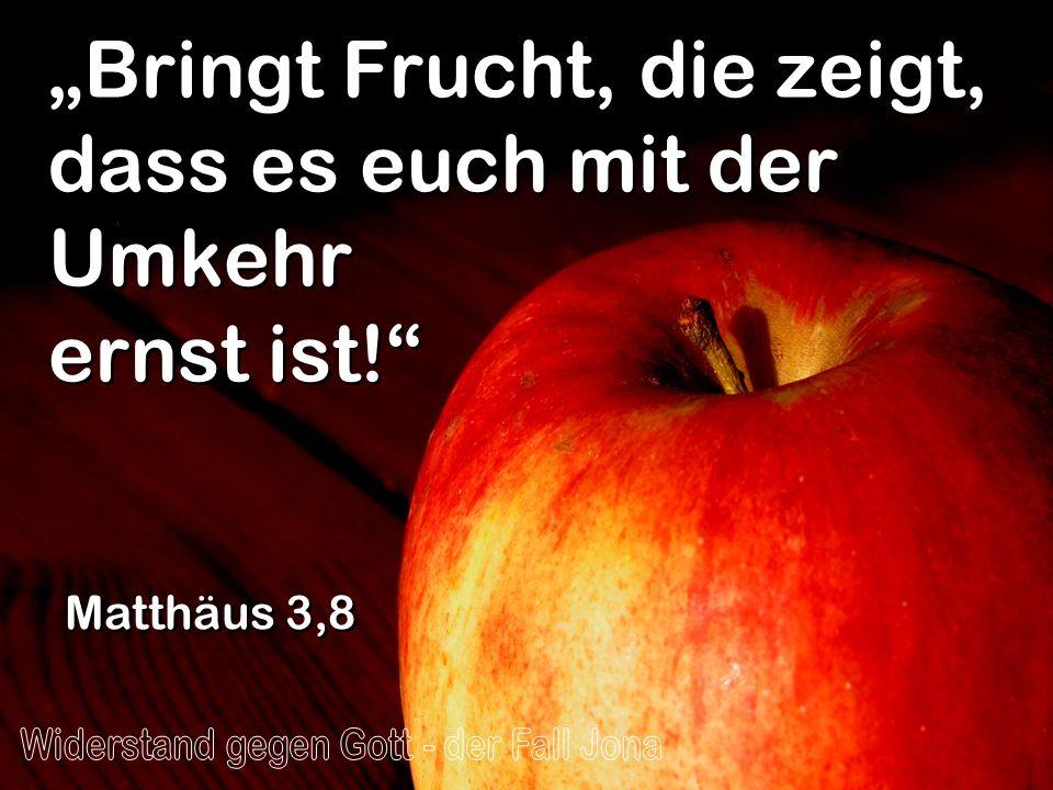 Bringt Frucht, die zeigt, dass es euch mit der Umkehr ernst ist! Matthäus 3,8