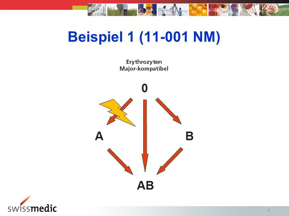 5 Beispiel 1 (11-001 NM)