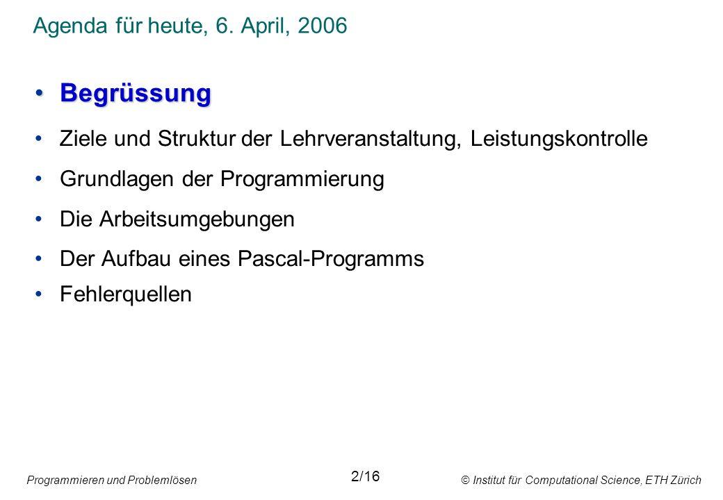 Programmieren und Problemlösen © Institut für Computational Science, ETH Zürich Das Team Dozent Prof.