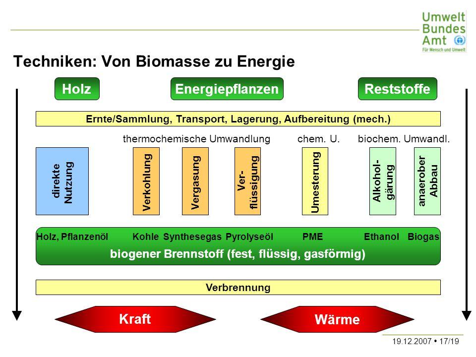 19.12.2007 17/19 Techniken: Von Biomasse zu Energie HolzReststoffeEnergiepflanzen Ernte/Sammlung, Transport, Lagerung, Aufbereitung (mech.) Verkohlung