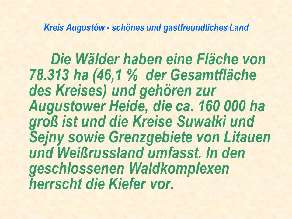 Die Wälder haben eine Fläche von 78.313 ha (46,1 % der Gesamtfläche des Kreises) und gehören zur Augustower Heide, die ca. 160 000 ha groß ist und die