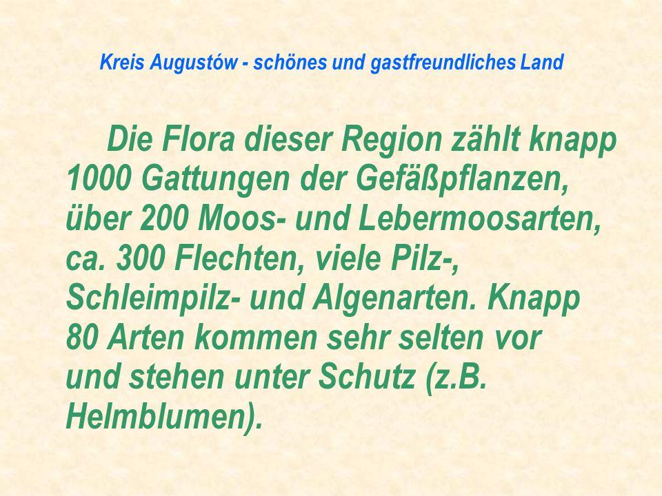 Die Flora dieser Region zählt knapp 1000 Gattungen der Gefäßpflanzen, über 200 Moos- und Lebermoosarten, ca. 300 Flechten, viele Pilz-, Schleimpilz- u