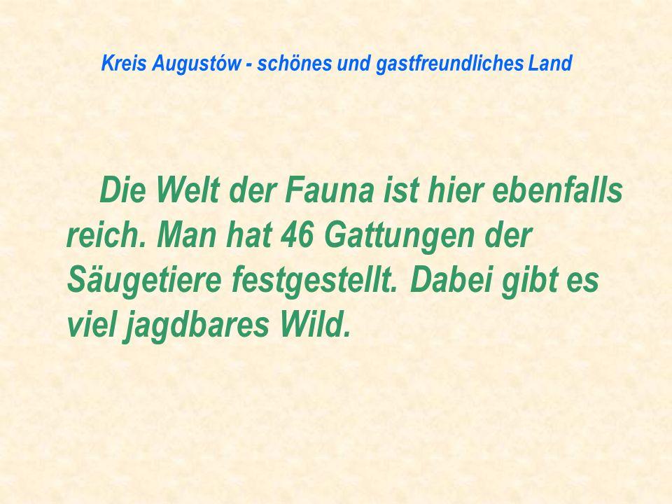 Die Welt der Fauna ist hier ebenfalls reich. Man hat 46 Gattungen der Säugetiere festgestellt. Dabei gibt es viel jagdbares Wild.