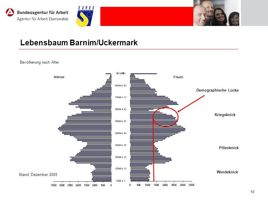 10 Stand: Dezember 2005 Wendeknick Pillenknick Kriegsknick Demographische Lücke Lebensbaum Barnim/Uckermark Bevölkerung nach Alter