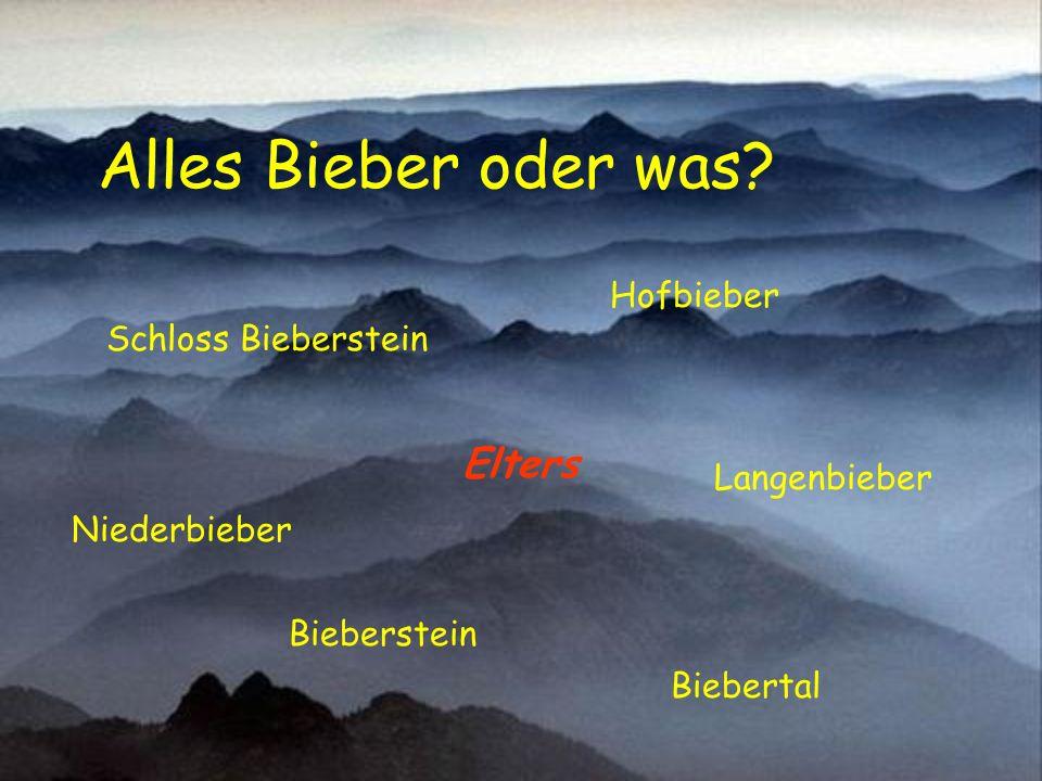 Pension Birkenbach in Elters