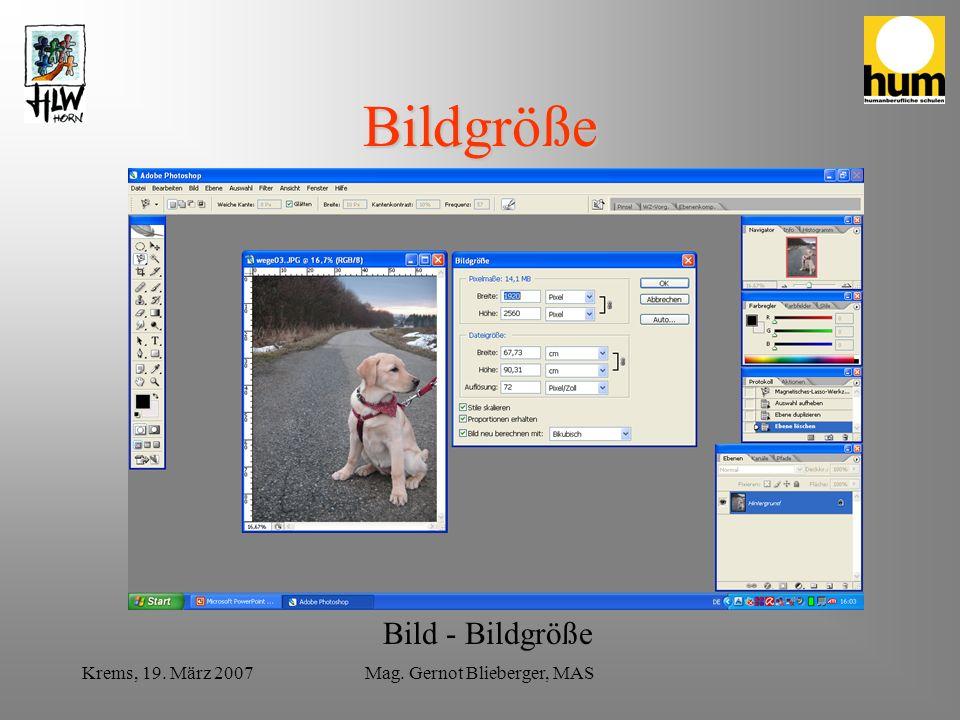 Krems, 19. März 2007Mag. Gernot Blieberger, MAS Bildgröße Bild - Bildgröße