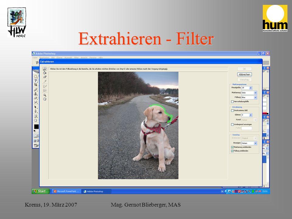 Krems, 19. März 2007Mag. Gernot Blieberger, MAS Extrahieren - Filter