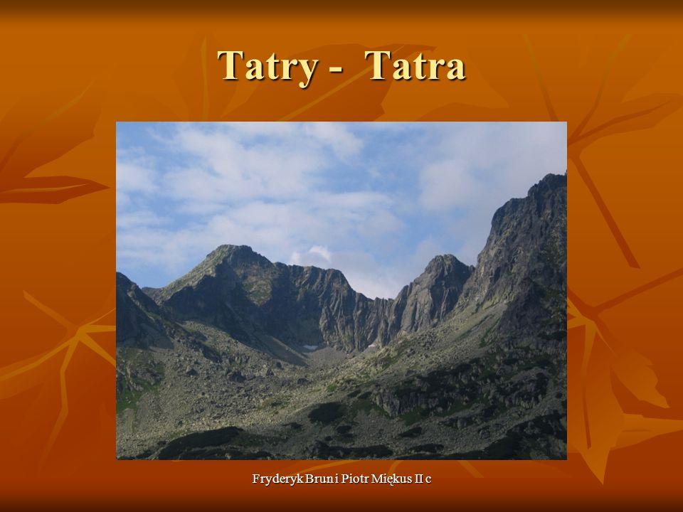Fryderyk Brun i Piotr Miękus II c Tatry - Tatra