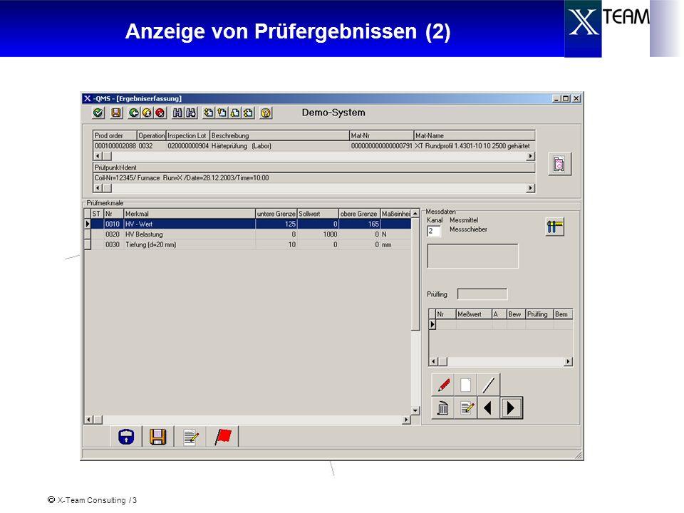 X-Team Consulting / 3 Anzeige von Prüfergebnissen (2)