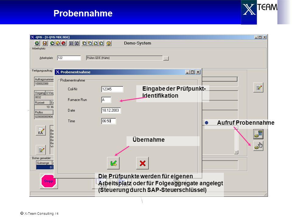X-Team Consulting / 4 Probennahme Aufruf Probennahme Eingabe der Prüfpunkt- Identifikation Die Prüfpunkte werden für eigenen Arbeitsplatz oder für Fol