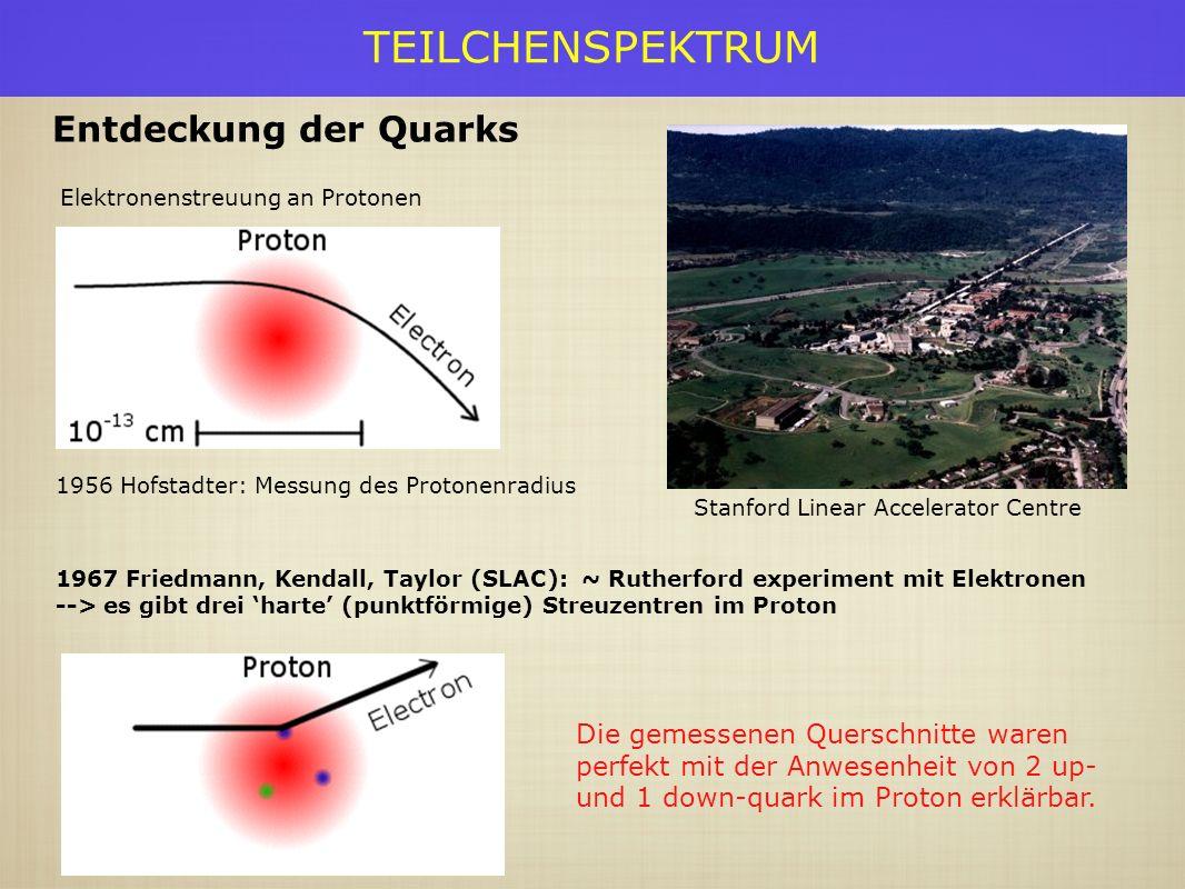 TEILCHENSPEKTRUM Elektronenstreuung an Protonen Entdeckung der Quarks Stanford Linear Accelerator Centre 1956 Hofstadter: Messung des Protonenradius 1967 Friedmann, Kendall, Taylor (SLAC): ~ Rutherford experiment mit Elektronen --> es gibt drei harte (punktförmige) Streuzentren im Proton Die gemessenen Querschnitte waren perfekt mit der Anwesenheit von 2 up- und 1 down-quark im Proton erklärbar.