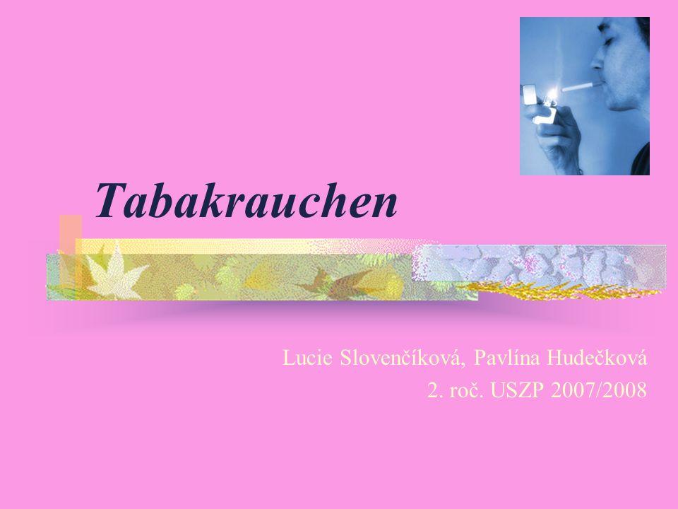 Tabakrauchen Lucie Slovenčíková, Pavlína Hudečková 2. roč. USZP 2007/2008