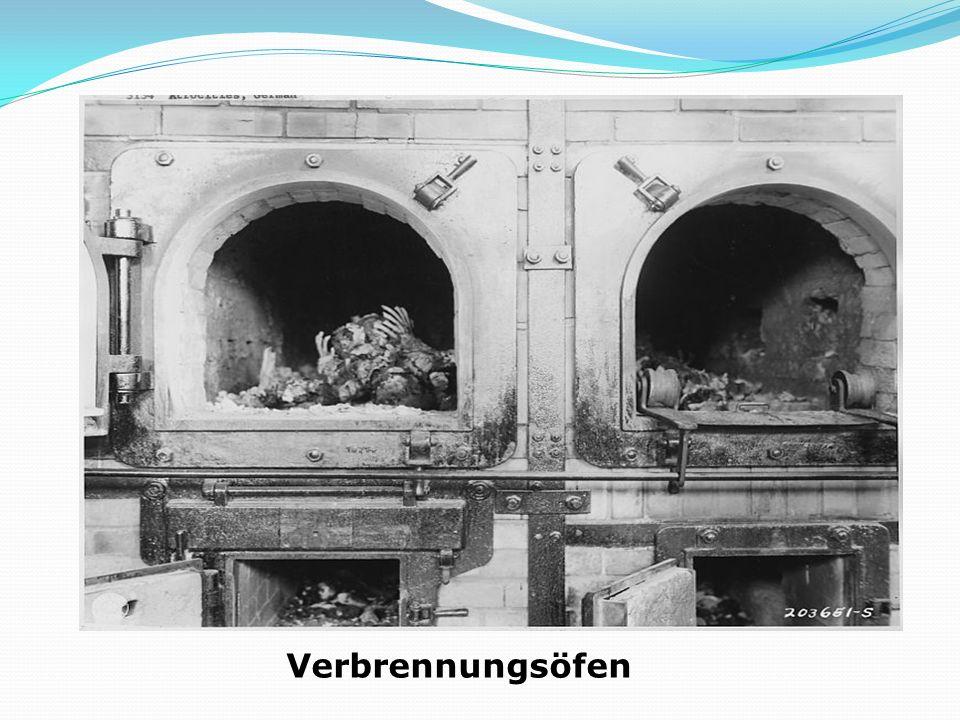 : Schwarzwälder Kirschtorte (Schwarzwälder Kirsch) beliebteste dt.