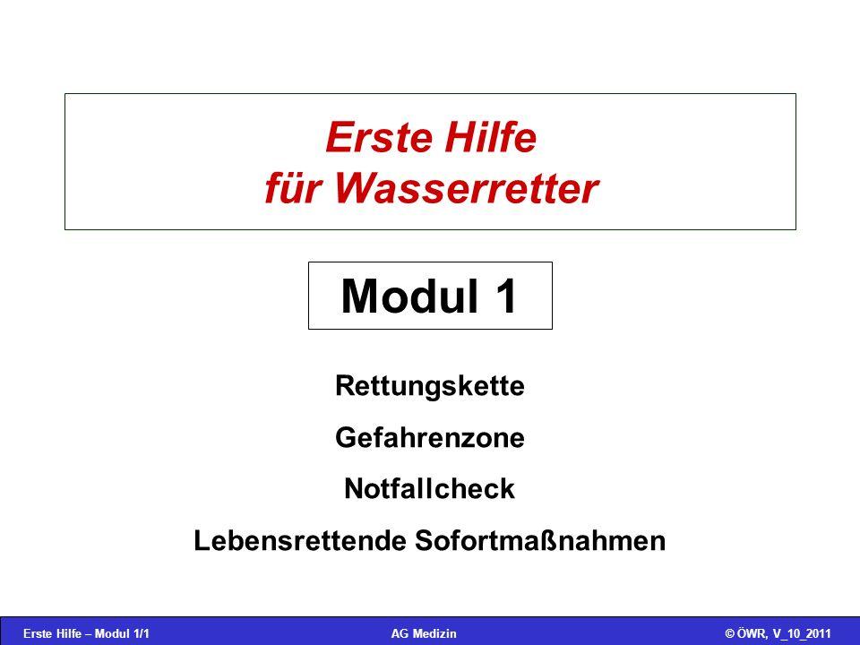 Erste Hilfe – Modul 1/12© ÖWR, V_10_2011AG Medizin Stabile Seitenlage