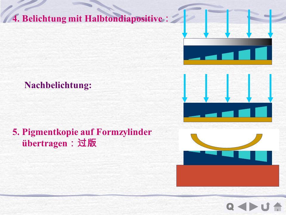 Q 4. Belichtung mit Halbtondiapositive Nachbelichtung: 5. Pigmentkopie auf Formzylinder übertragen