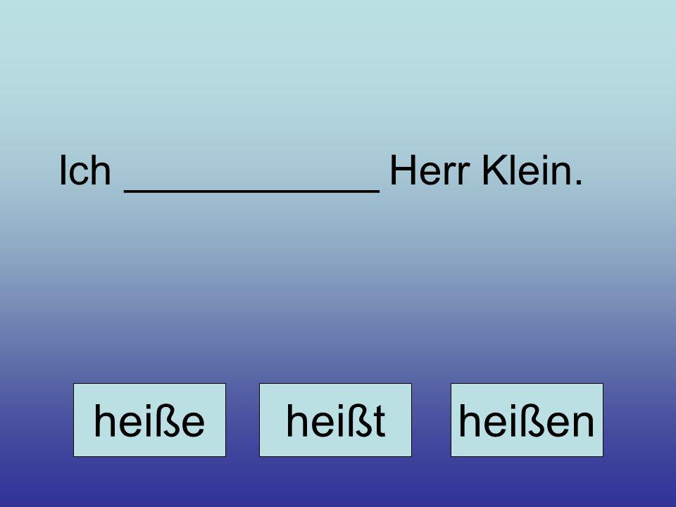 Ich ___________ Herr Klein. heißeheißtheißen