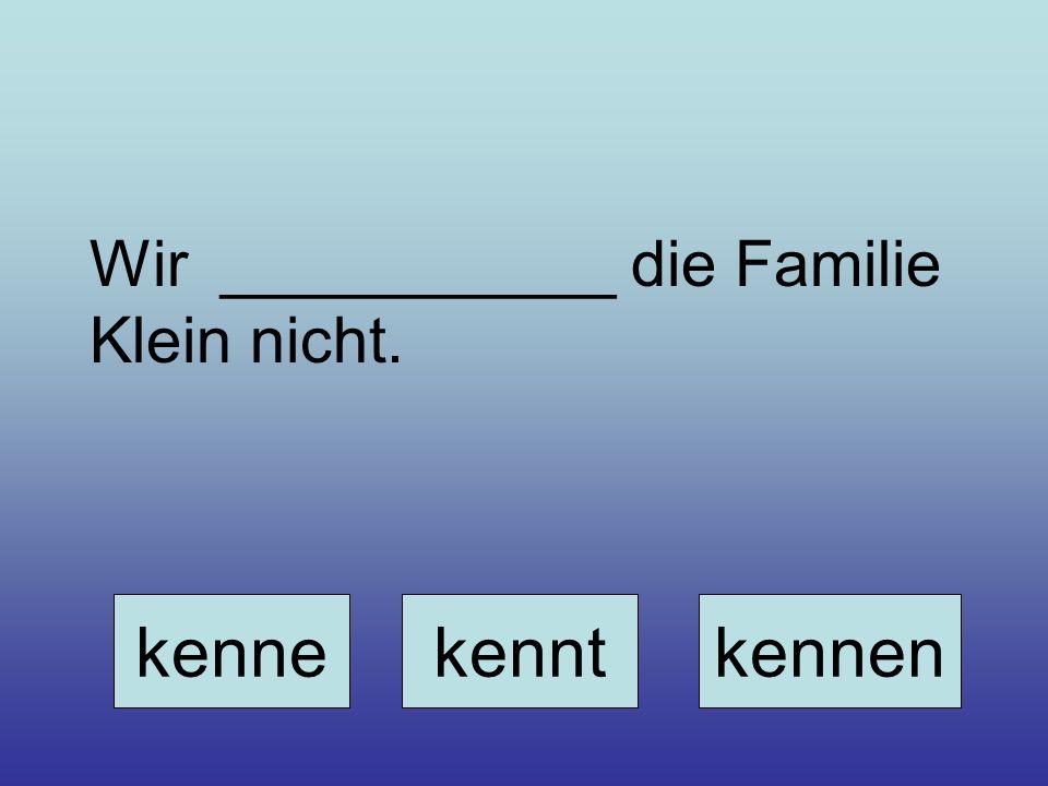 Wir ___________ die Familie Klein nicht. kennekenntkennen