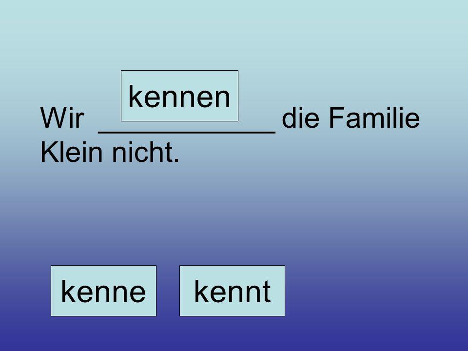 Wir ___________ die Familie Klein nicht. kennekennt kennen