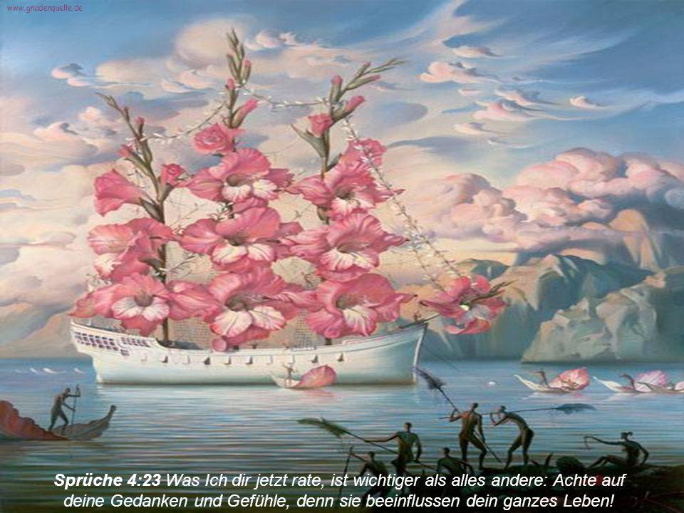 Sprüche 30:5 Was Gott sagt, ist wahr und zuverlässig; Er beschützt alle, die Schutz bei Ihm suchen.