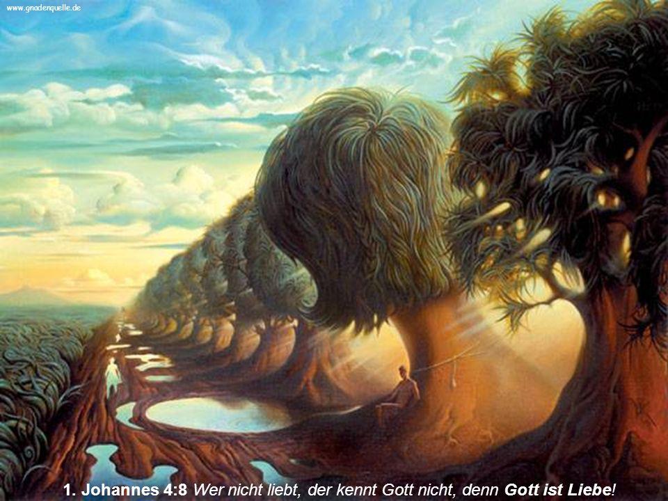 1. Johannes 4:8 Wer nicht liebt, der kennt Gott nicht, denn Gott ist Liebe! www.gnadenquelle.de