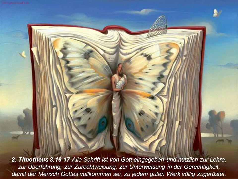 2. Timotheus 3:16-17 Alle Schrift ist von Gott eingegeben und nützlich zur Lehre, zur Überführung, zur Zurechtweisung, zur Unterweisung in der Gerecht