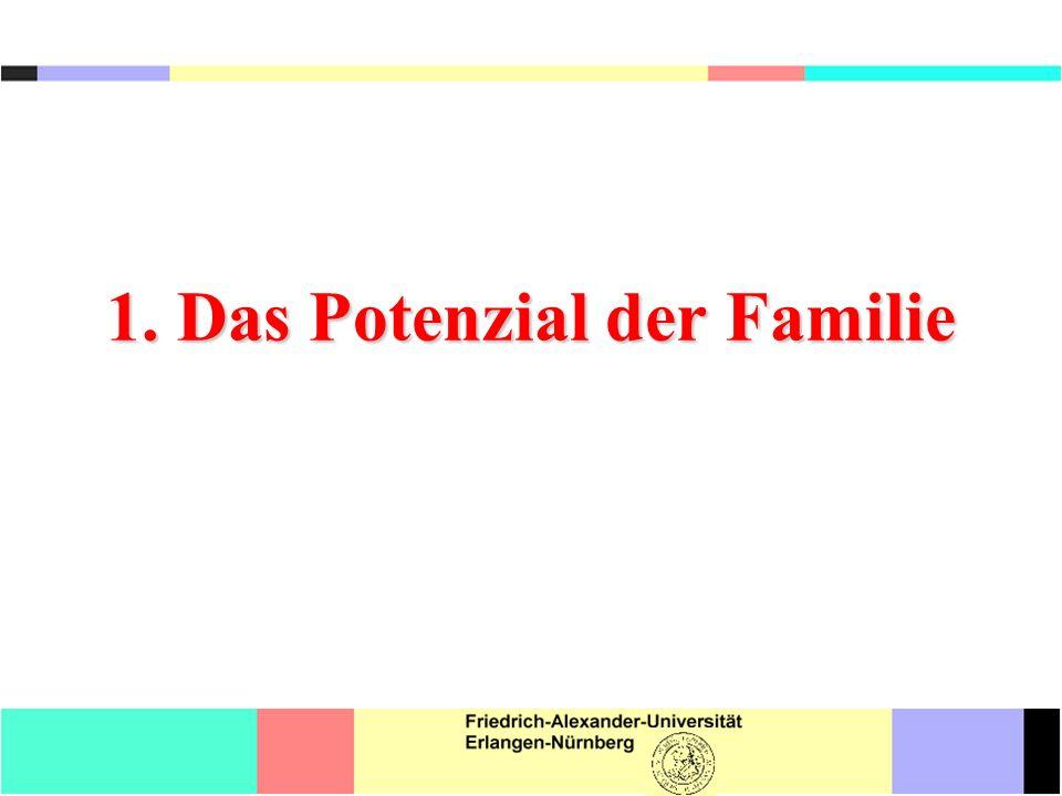 Begleituntersuchungen zu PISA 2000 (OECD 2001, S.356f.) Einflüsse von Schule, Lehrkräften, Unterricht Einflüsse der Familie Sonstige Einflüsse Lesekompetenz31,0%66,1%2,9% Mathematische Kompetenz28,3%62,0%9,7% Naturwissenschaftl.